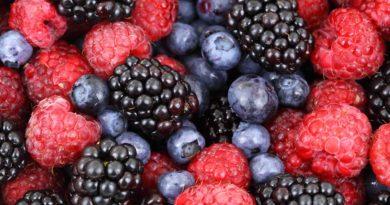 Berry diet