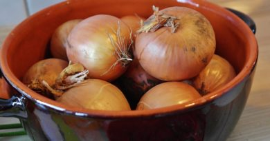 Onion soup diet