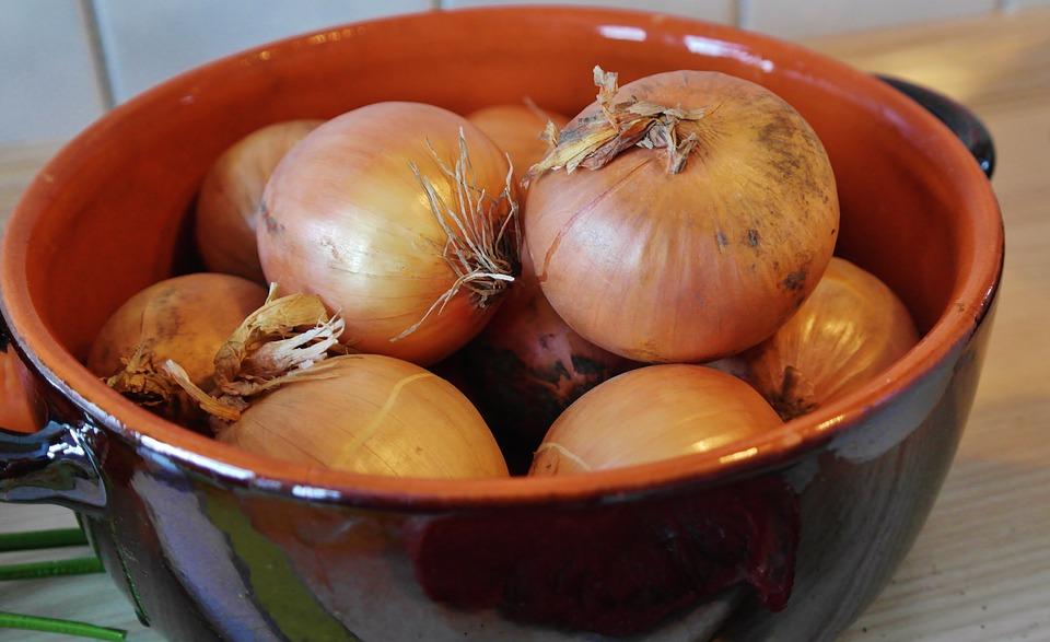 Onion soup diet