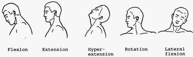 Lateral Neck Flexion